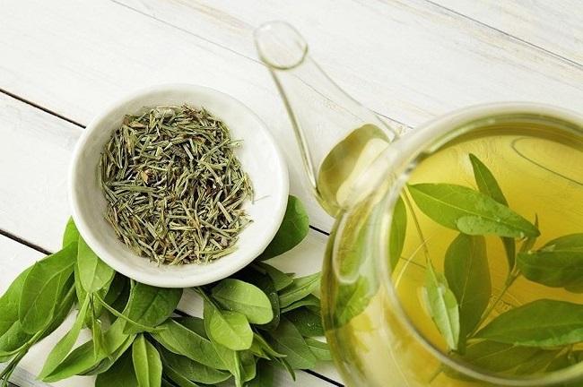 Cách trị mụn ẩn dưới da hiệu quả nhất bằng lá trà xanh